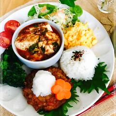お家ご飯/ワンプレート/朝ご飯/フード 朝ご飯  麻婆豆腐 鰯バーグ  大根おろ…