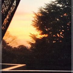 夕焼け/空/住まい 今日の夕焼け リビングから 見える夕焼け…