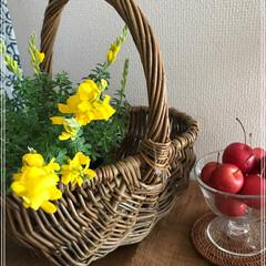 花のある暮らし/グリーン/雑貨/インテリア/住まい/姫林檎 花を飾って 気分を⤴️ 心も 体も 元気…
