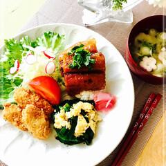 お家ご飯/ワンプレート/朝ご飯/フード 今日の 朝ご飯 さんま蒲焼丼風 牡蠣フラ…