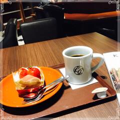 カフェ/スイーツ/フード お買い物の 帰り 一休み いちごのケーキ…