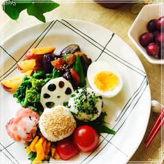 ヘルシー/お家ご飯/ワンプレート/朝ご飯/フード 昨日の 朝ご飯です。 ヘルシー 野菜中心…