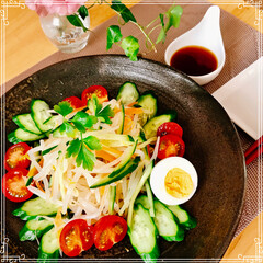 サラダ/晩ご飯/おうちごはん/フード もやしの 中華サラダ お休みの日は 夕食…