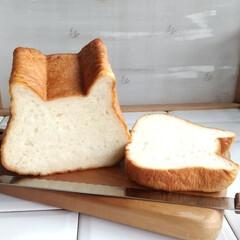 パン屋さんの食パン/ねこ型食パン/朝食/食パン/おうちごはん 今朝の朝食パン☕️🍞🌄 昨日、 お友だち…