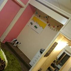 中古物件/床の間/リノベーション/ピンクの壁/ペンキ 築35年の中古物件をリノベーション! 暗…
