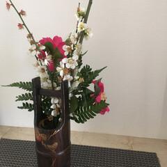 生け花 ご近所さんからお花💐を いただきました。