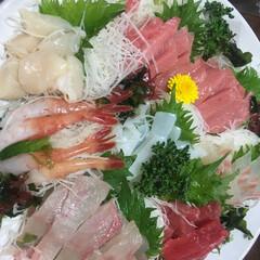 お刺身/お正月/フード/グルメ お刺身の盛り合わせ  手巻き寿司