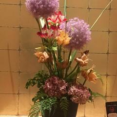 生け花 お店のお花💐