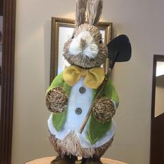 ウサギ/ケーキ屋/おでかけ 可愛い ウサギ さん🐇 ケーキ屋さんでお…