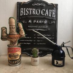 麻袋/サボテン/DIY/雑貨/100均/セリア/... コーヒーの麻袋で、サボテン🌵をDIY 💕