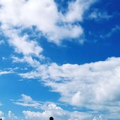 プーケット/夏/海/空/ビーチ プーケットの空と海