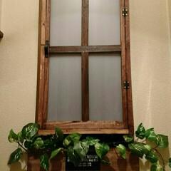 プラダン/内窓DIY/セリア/ダイソー