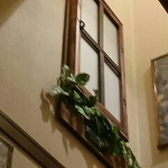 プラダン/内窓DIY/セリア/ダイソー 階段の内窓 part 2 (*^.^*)