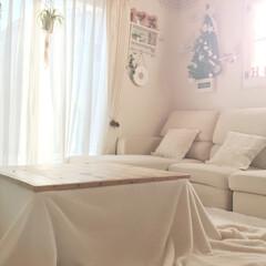 リビング/冬仕様/ホワイト/クリスマスツリー/こたつ/DIY/... リビングも冬仕様!  手作りしたこたつ!…