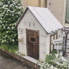 雪/お庭DIY/DIY/キッズハウス/庭づくり/100均 雪が降った日のお庭の小さなおうち! 雪が…