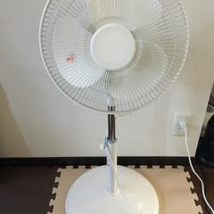 ニトリ シンプルな扇風機