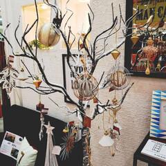クリスマス雑貨/クリスマスツリー/雑貨屋さん  オシャレな雑貨屋さんゎ ツリー✨🎄✨も…