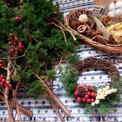 スワッグ作り/ヒムロスギ/サンキライ/リース作り/アーチの花全てをサプライズプレゼント/三重はなフェスタ またまた三重はなフェスタのphotoです…(3枚目)