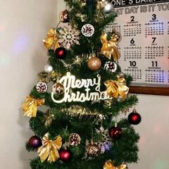 クリスマスツリー飾り付け/クリスマスツリーセット/クリスマスツリー/オーナメント/松ぼっくり/ガーランド/... 昨日、チビと飾り付けました(^ー^)  …