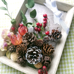 まつぼっくり/百均インテリア/フォトフレームアレンジ/木の実/ダイソー/雑貨 フォトフレームに木の実やまつぼっくりで飾…