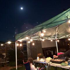ウッドフェンス/BBQ/ストリングライト/手作りのお庭/おうちごはん/住まい 昨日の夜お庭でBBQしました♡ 少し前に…