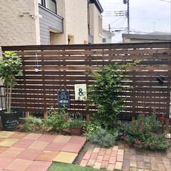 レンガ/ウッドフェンス/手作りのお庭/ガーデニング/DIY おはようございます♡ 久々にお庭に出たら…