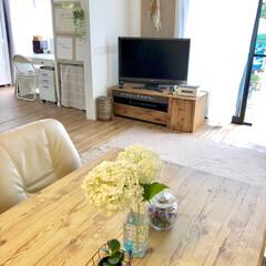 リビング/セルフリノベーション/和室から洋室/キャンドゥ/リメイクシート/天板リメイク/... お庭で育てた紫陽花を飾りました:.* ♡…