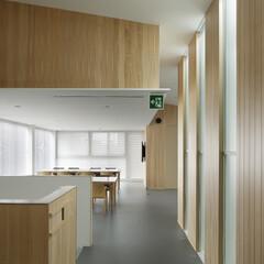 無垢材/シンプル 無垢材の木と白い天井