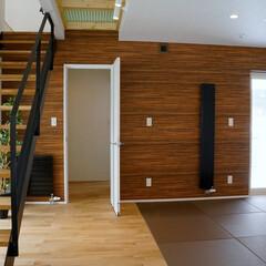 畳/インテリア畳/洋風畳/現代和室 リビング、ダイニングとつながる畳スペース…