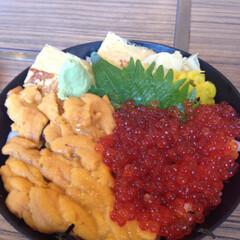 いくらとうに/グルメ/海鮮丼/令和元年フォト投稿キャンペーン/フォロー大歓迎/至福のひととき/... 海鮮ドーン! いくら、うに大好き。