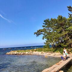 キャンプ/海/海キャンプ/サーフィン/サーフスタイル/カリフォルニアスタイル/... 男同士で磯遊び 夏の思い出(1枚目)