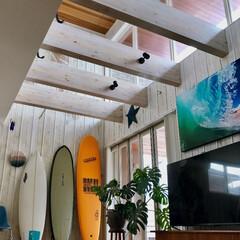 サーフィン/サーフボード/アート/マイホーム/観葉植物/ティンバーンスター/... 1番右のcatchsurf は息子用に購…