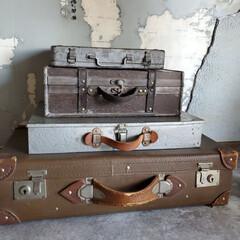 ディスプレイ/古道具/トランク いろんな型の 古いトランク♪ 茶系かシル…