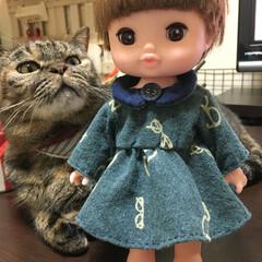ファッション/人形/おもちゃ/子ども/ハンドメイド 娘のお人形のレミン ちゃんにワンピースを…