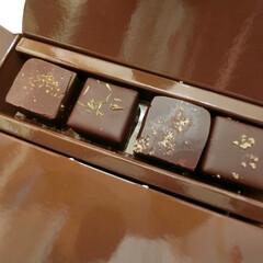 ジャン・ポール=エヴァン/フロマージュ/期間限定/チョコレート/ショコラ チーズを使ったチョコレートのセット。クセ…