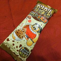 ガリガリ君リッチ/アイスクリーム/赤城乳業/クッキー&バニラ 大好きなガリガリ君シリーズの新作、クッキ…
