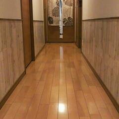 廊下 廊下にアクセントNo.2 長い廊下なので…