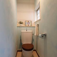 ミサワホームイング/水性ペイント/水性塗料/木製便座/エコカラット/トイレインテリア/... トイレのリフォーム。壁は淡いブルーとホワ…