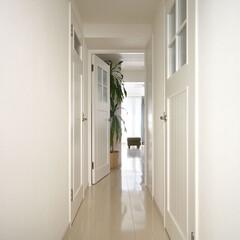 リフォーム/インテリア/住まい/玄関/リノベーション/インテリアコーディネート/... 中古マンションのリノベーション。床、壁、…