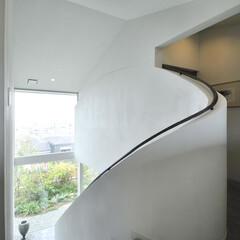 珪藻土/トップライト 壁・天井共に珪藻土塗りで仕上げた空間です
