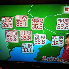 最高気温 暑いはずですね 私がいる東京都青梅市 最…