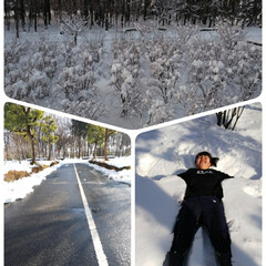 冬の一枚/大雪警報/思い出/冬 冬の一枚に応募します👍 今年の大雪警報の…