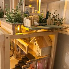 DIY/ハムスター/雑貨/100均/セリア/ダイソー/... ハムスターのお家を増築❤︎  100均の…