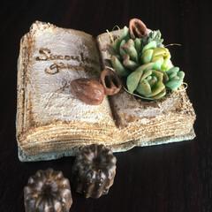 石鹸/手作り石鹸/モルタル造形/モルタルデコ モルタルデコ💕 モルタルで多肉BOOK、…