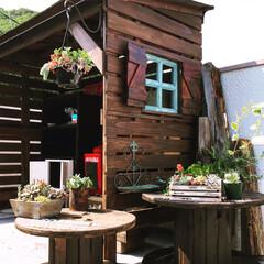 ガーデン小屋/DIY/ガーデニング/屋上ガーデン/屋上 何にもない屋上にガーデンを作りたくて、小…