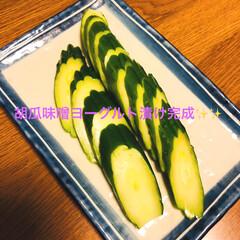胡瓜味噌ヨーグルト漬け/おうちごはん yuuさんからコメント頂き1日漬けて食べ…