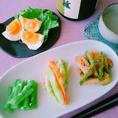 お酒/山菜/おつまみ/お酒のお供/作りおき/手作り/... 日本酒手みやげに長男が晩ごはん食べに☺ …