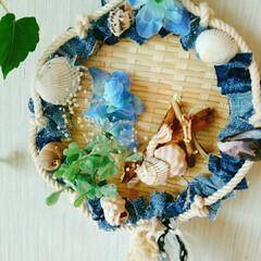 ブルー/貝がら/リース/雑貨/ハンドメイド 夏リース🌿  貝がら🐚 流木🏊 ロープ⛵…