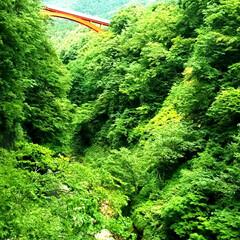 渓谷/橋/ドライブ/朱色 朱色。 写真で見た景色追跡して辿り着いた…(2枚目)