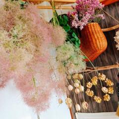 スモークツリー/ドライフラワー/おばあちゃんありがとう/夏インテリア/季節インテリア/七夕飾り/... 梅雨空の日 やばい💦💦🤣 巨木なスモーク…
